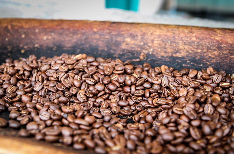 Grãos de café na Zona Cafetera, Colômbia