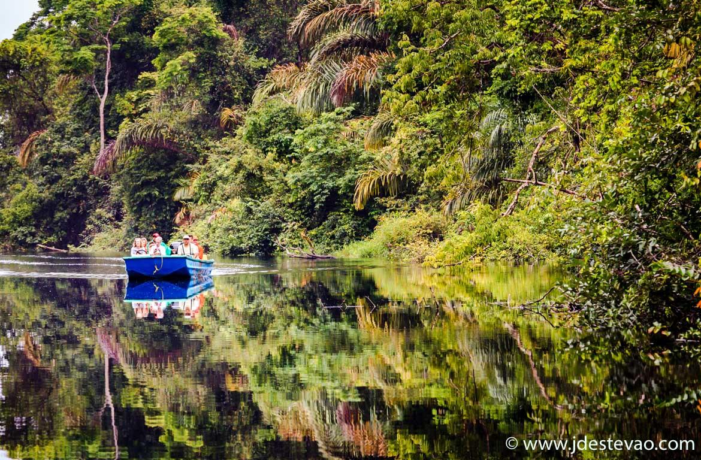 Os canais e a floresta do Parque Nacional do Tortuguero, na Costa Rica
