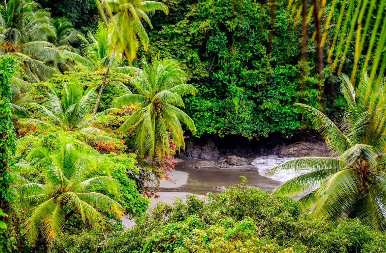 Parque Nacional Corcovado, Costa Rica.