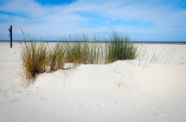 Dunas de areia nas Ilhas Frísia, Holanda