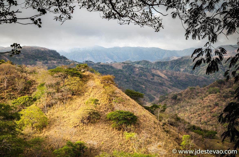 Floresta de Monteverde, Costa Rica