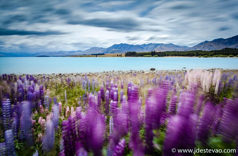 Lago Tekapo, na Nova Zelândia,