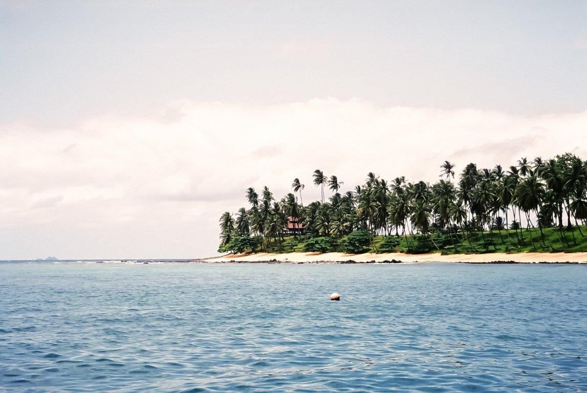 Palmeiras no Ilhéu das Rolas em São Tomé e Príncipe