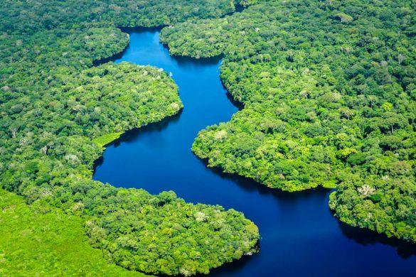 Vista aérea da floresta da Amazónia, Brasil