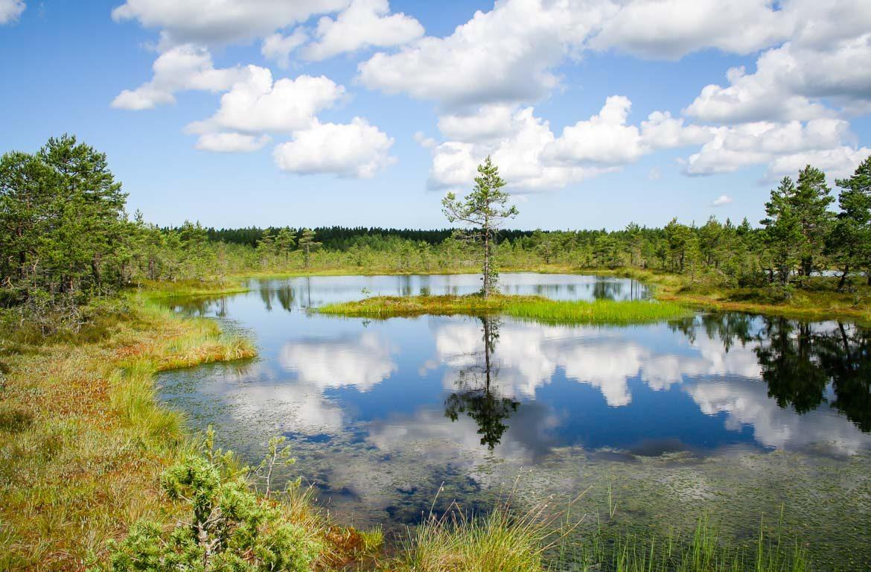 Parque Nacional de Lahemaa, Estónia