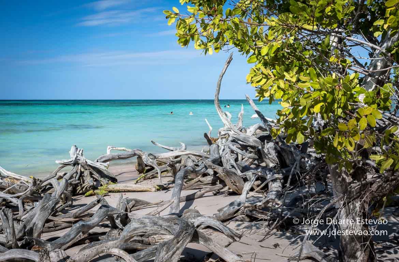 Praia em Cayo Jutias, Cuba