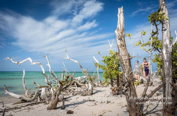Turistas na praia em Cayo Jutias, Cuba