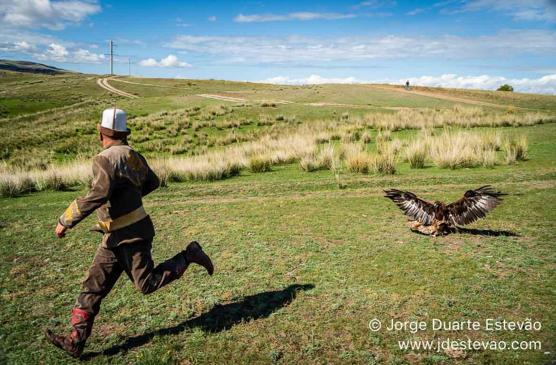Caça com águia, Quirguistão, Ásia Central