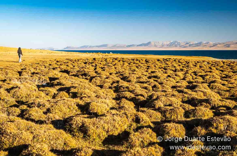 Turista no Lago Song-Kul Quirguistão, Ásia Central