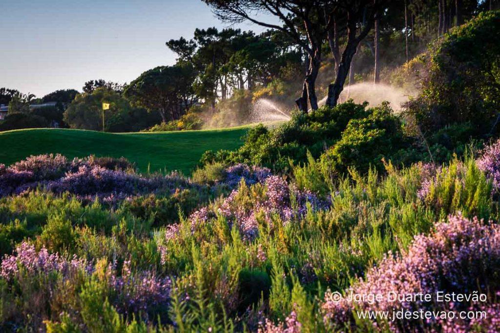 Campos de golfes da Quinta do Lago, Algarve