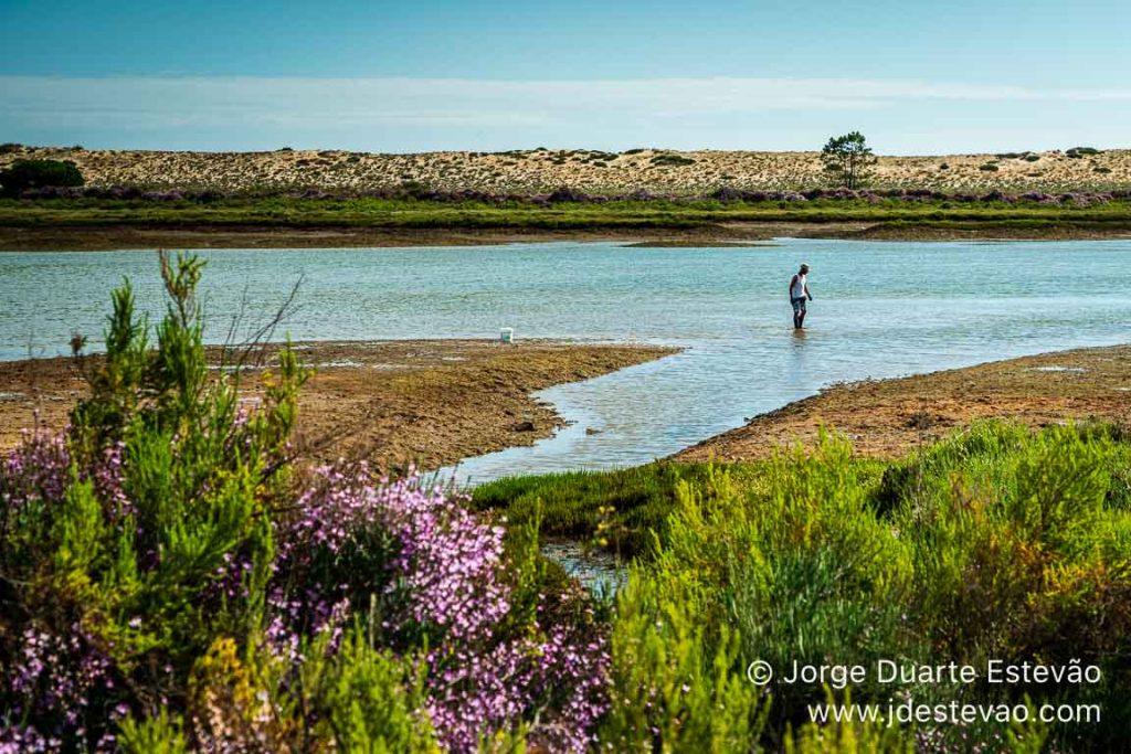 Pescador na Ria Formosa, Algarve