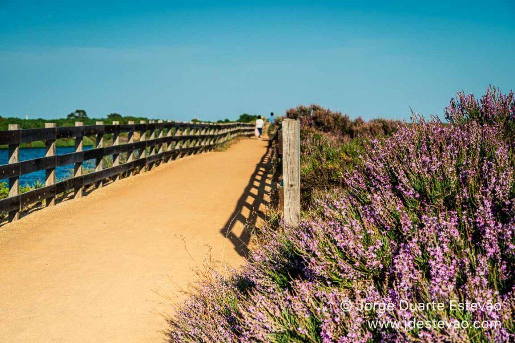 Trilho de São Lourenço, Quinta do Lago, Algarve