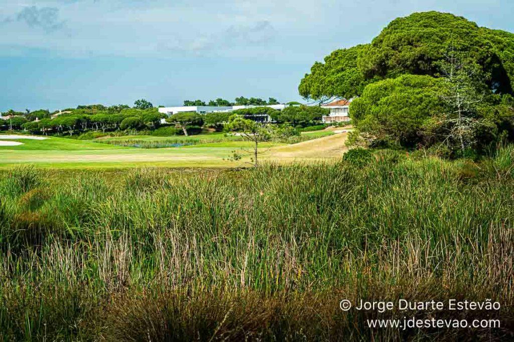 campos de golfes da Quinta do Lago