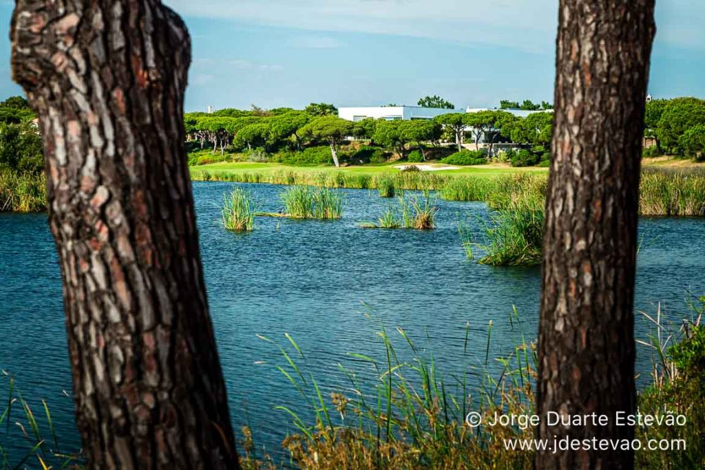 Quinta do Lago, Algarve