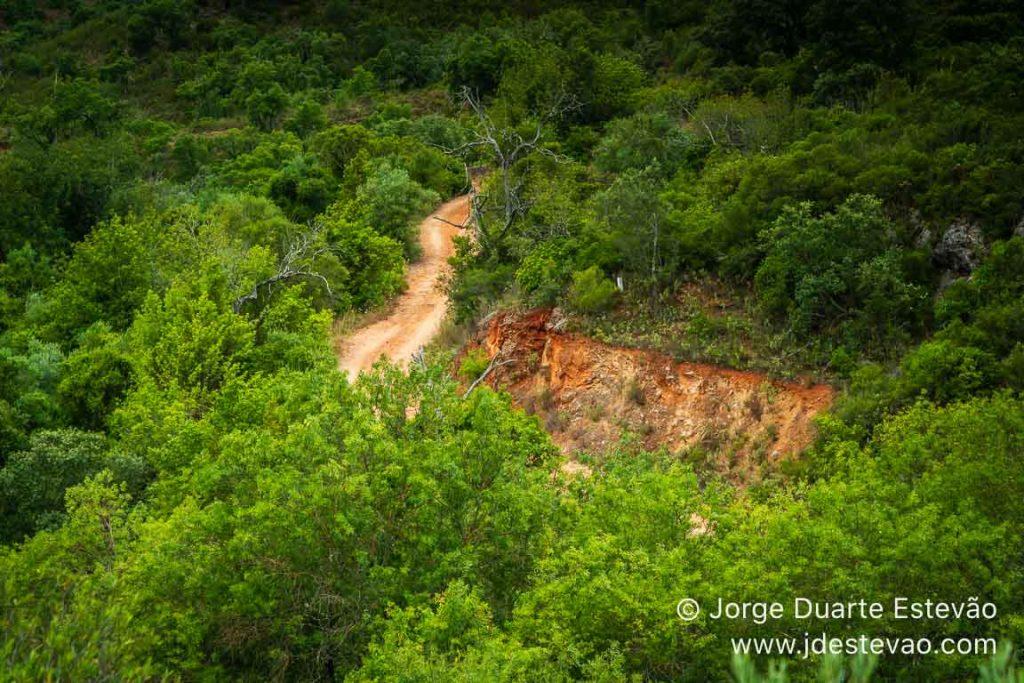 Mancha verde do Percurso Pedestre da Fonte Benémola, Querença,