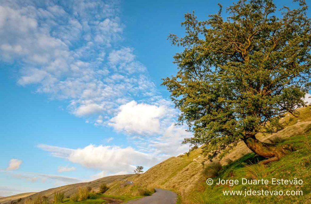 Road-trip, Gales