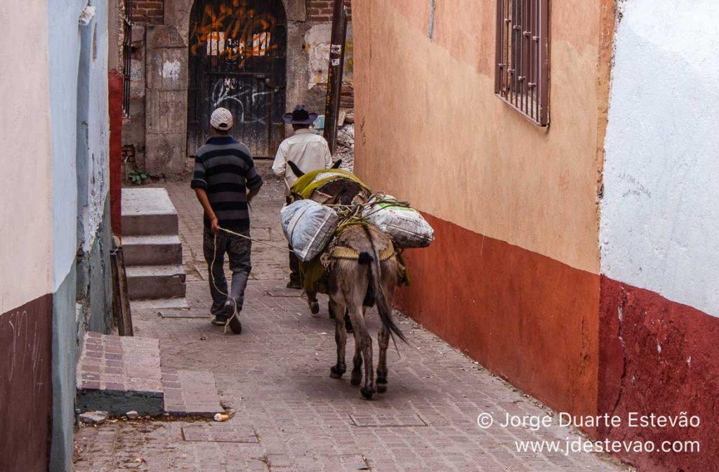 Burro a carregar sacas, em Guanajuato, no México