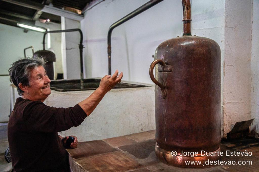 Destilação de medronho