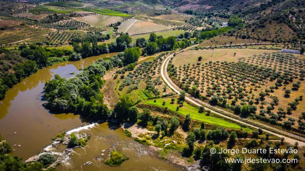 Vista aérea das plantações de olivais e do Rio Tua